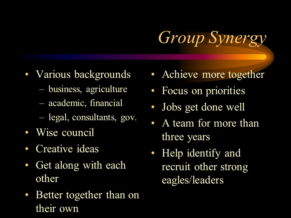 Group Synergy Various backgrounds –business, agriculture –academic, financial –legal, consultants, gov.