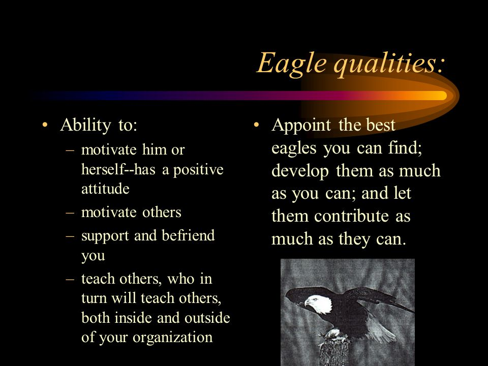 Eagle qualities: Ability to: –motivate him or herself--has a positive attitude –motivate others –support and befriend you –teach others, who in turn w