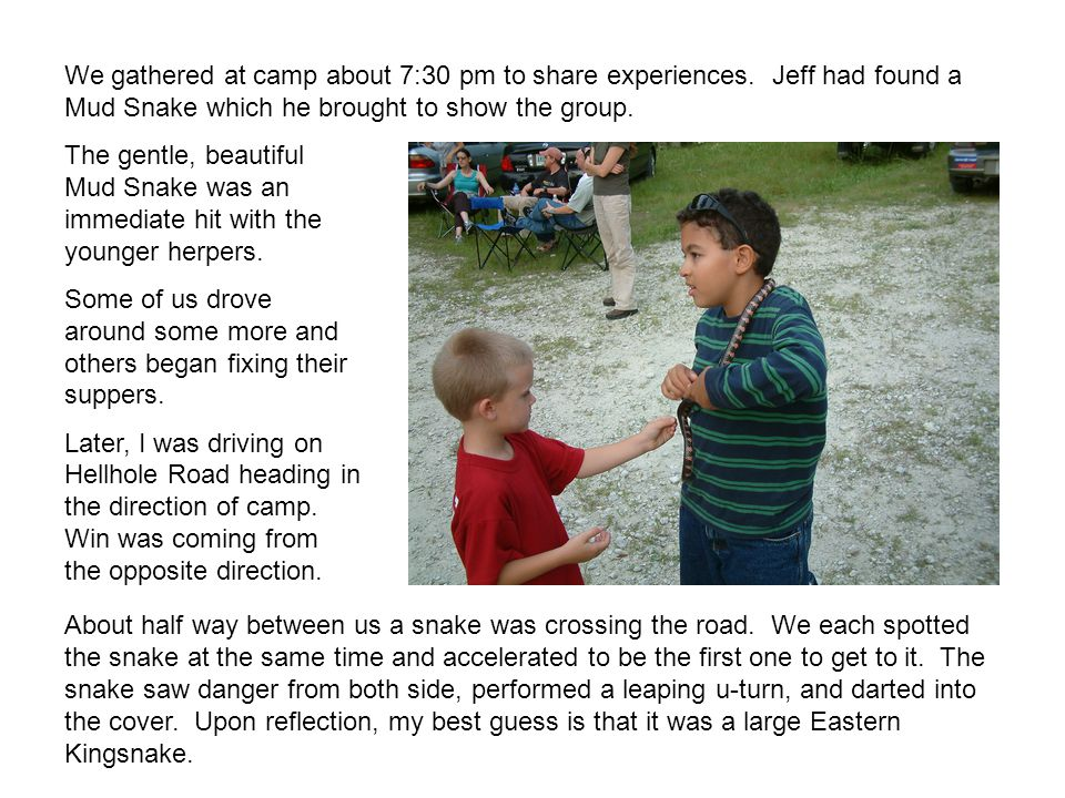 We gathered at camp about 7:30 pm to share experiences. Jeff had found a Mud Snake which he brought to show the group. The gentle, beautiful Mud Snake