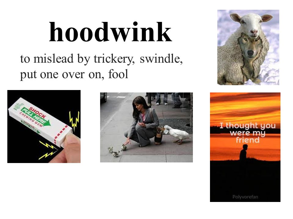 hoodwink to mislead by trickery, swindle, put one over on, fool