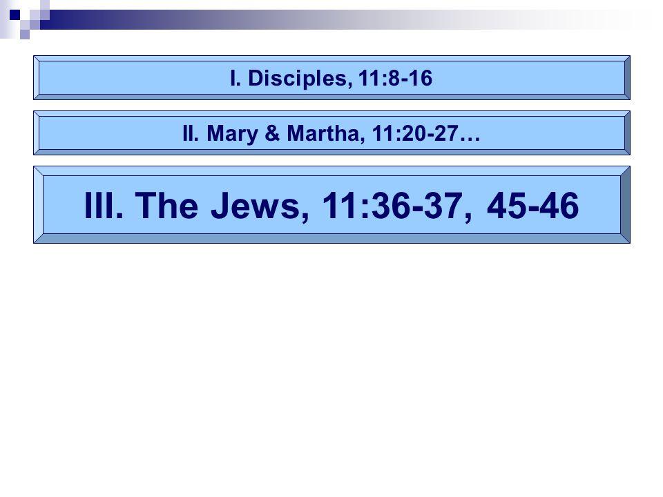 I. Disciples, 11:8-16 III. The Jews, 11:36-37, 45-46 II. Mary & Martha, 11:20-27…