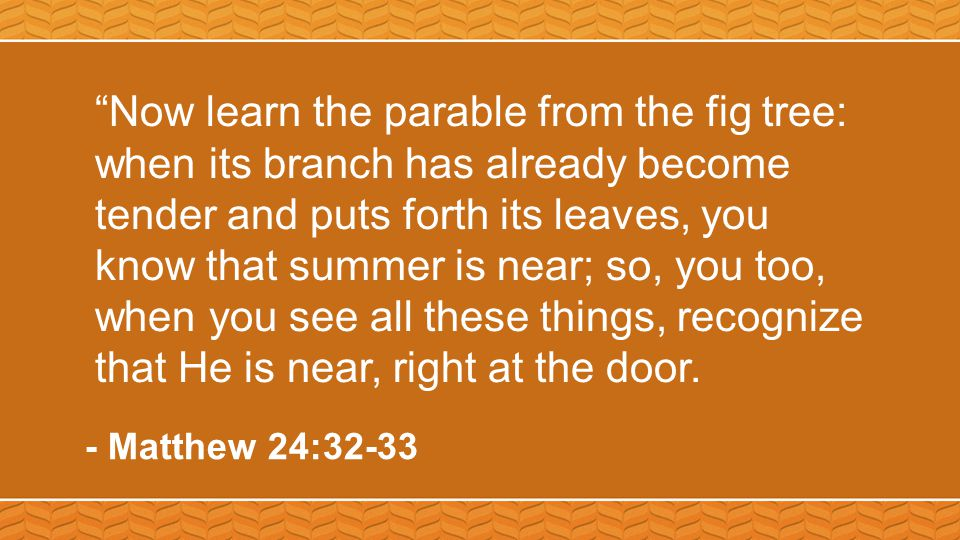 """""""Now learn the parable from the fig tree: when its branch has already become tender and puts forth its leaves, you know that summer is near; so, you t"""