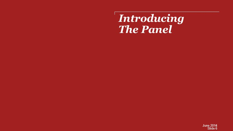 Introducing The Panel Slide 6 June 2014
