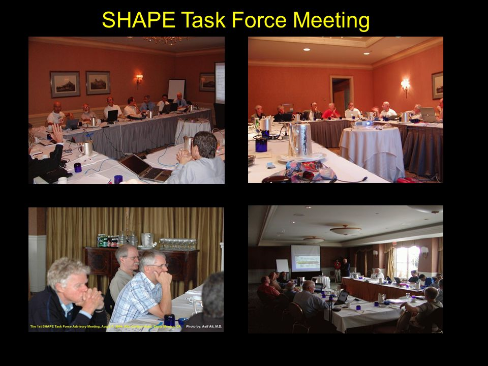 SHAPE Task Force Meeting