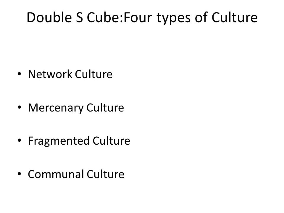 Double S Cube:Four types of Culture Network Culture Mercenary Culture Fragmented Culture Communal Culture