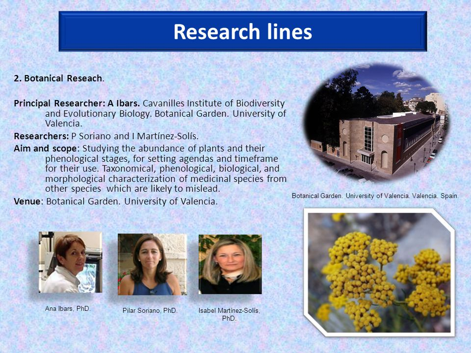Research lines 2. Botanical Reseach. Principal Researcher: A Ibars.