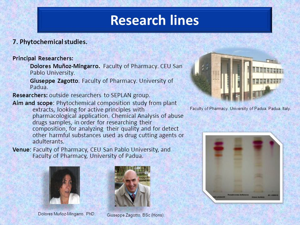 7. Phytochemical studies. Principal Researchers: Dolores Muñoz-Mingarro.