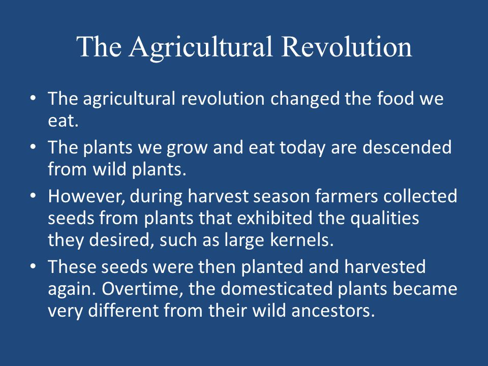 The Agricultural Revolution The agricultural revolution changed the food we eat. The plants we grow and eat today are descended from wild plants. Howe
