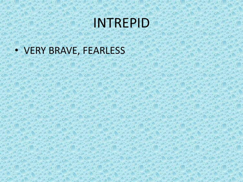 INTREPID VERY BRAVE, FEARLESS