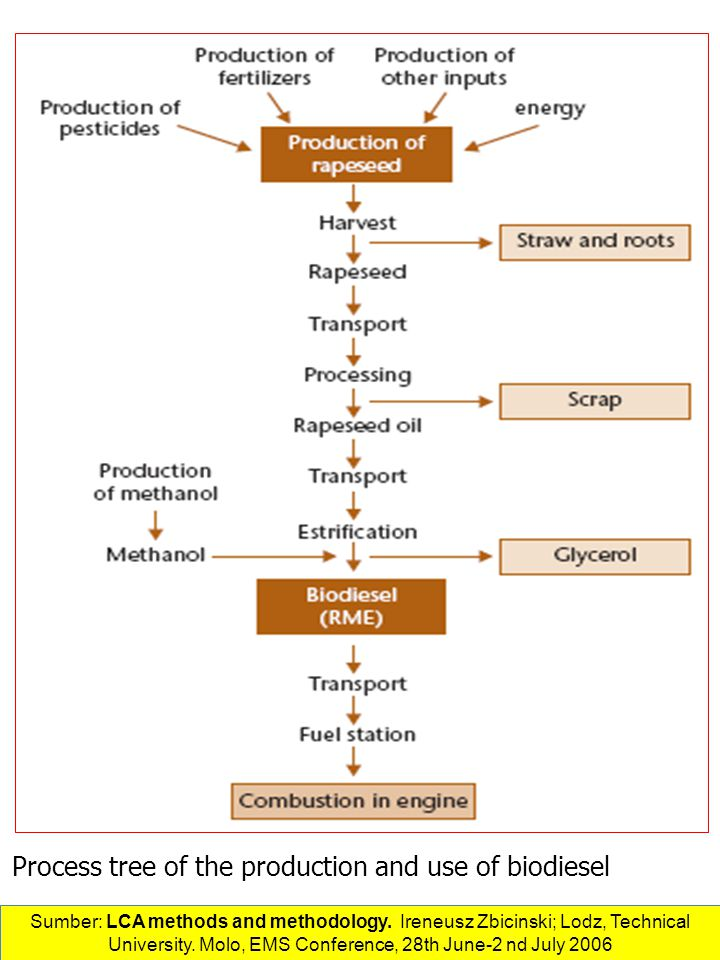 Process tree of the production and use of biodiesel Sumber: LCA methods and methodology.