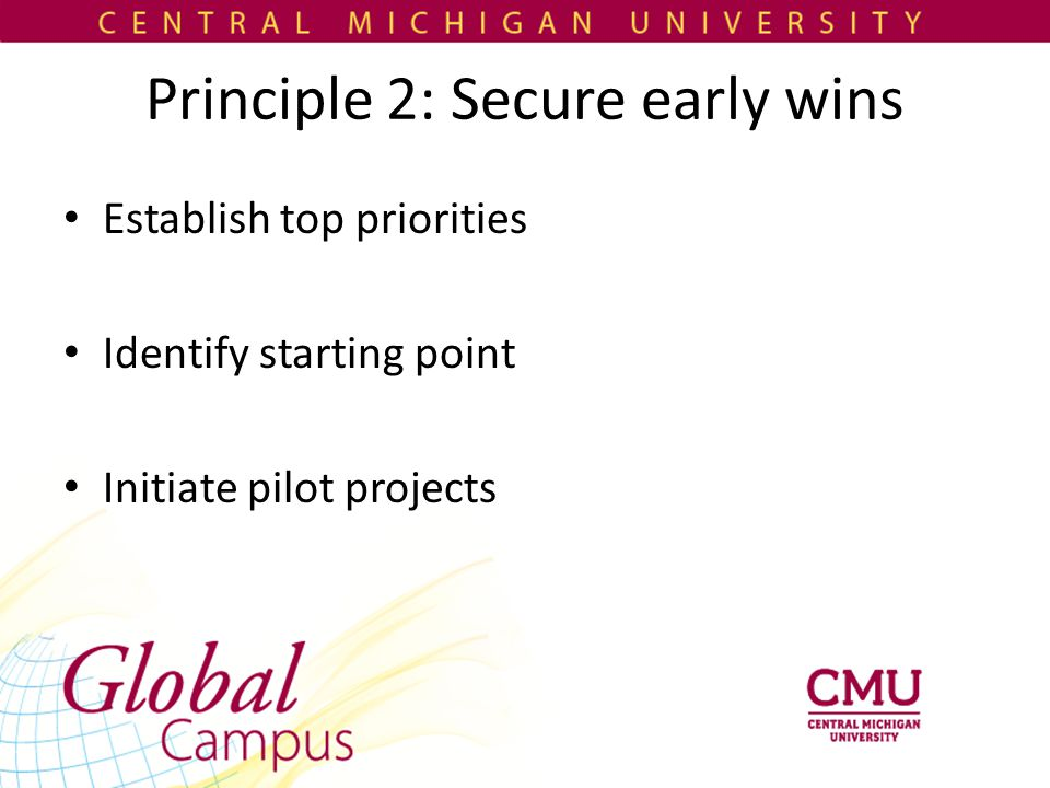 Principle 2: Secure early wins Establish top priorities Identify starting point Initiate pilot projects