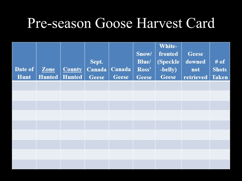 Pre-season Goose Harvest Card Date of Hunt Zone Hunted County Hunted Sept. Canada Geese Canada Geese Snow/ Blue/ Ross' Geese White- fronted (Speckle -