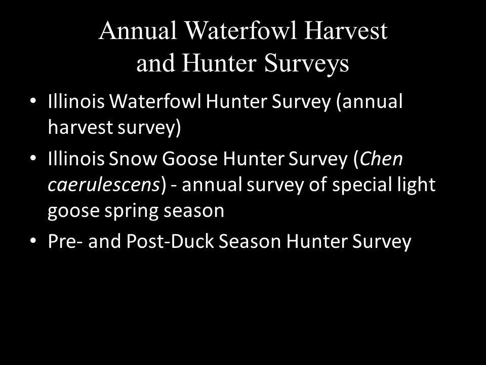 Annual Waterfowl Harvest and Hunter Surveys Illinois Waterfowl Hunter Survey (annual harvest survey) Illinois Snow Goose Hunter Survey (Chen caerulesc