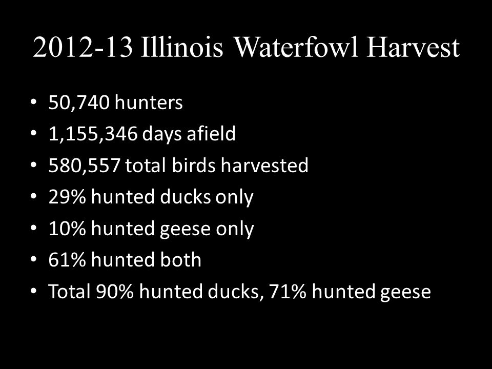 2012-13 Illinois Waterfowl Harvest 50,740 hunters 1,155,346 days afield 580,557 total birds harvested 29% hunted ducks only 10% hunted geese only 61%