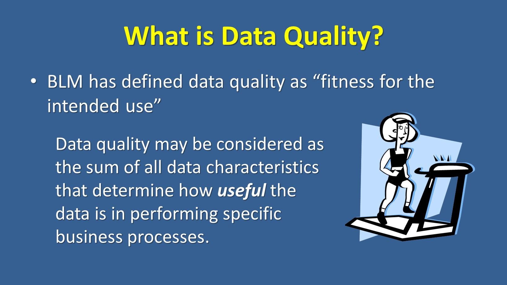 What is Data Quality.