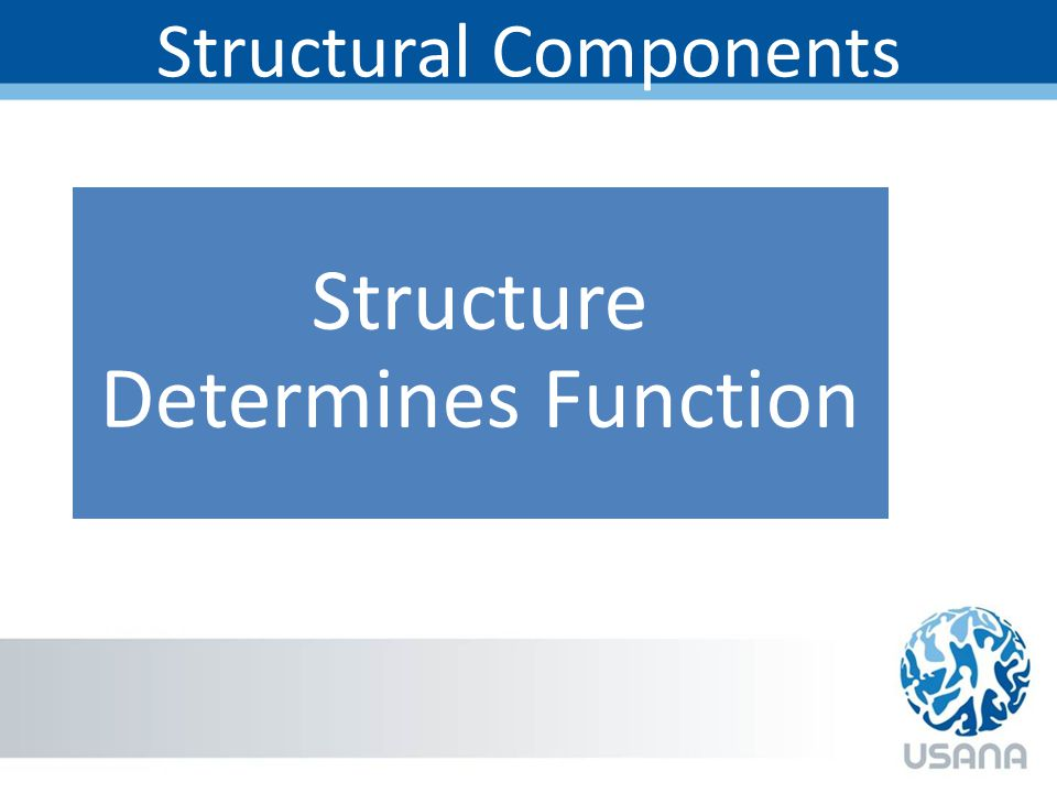 Structural Components Structure Determines Function