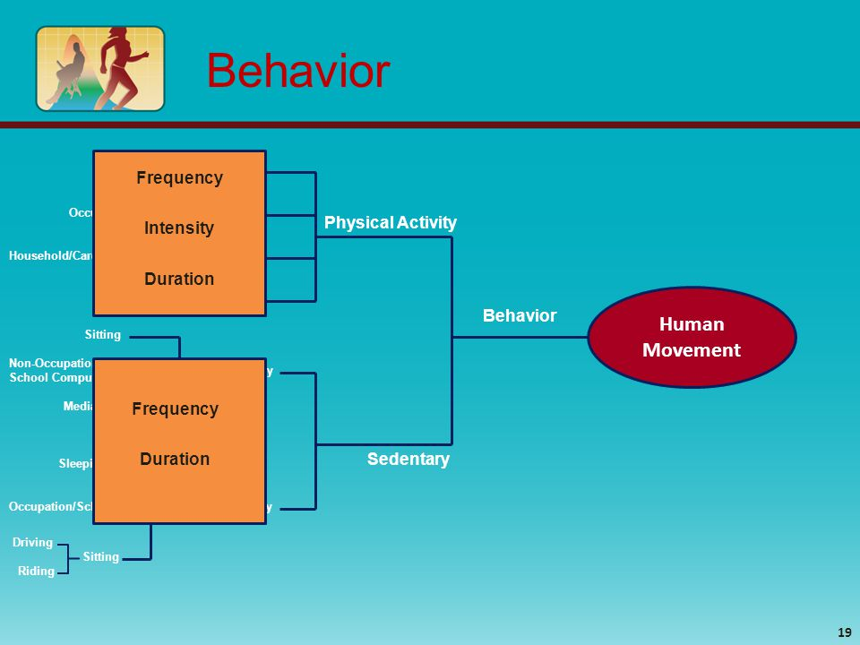 Human Movement 19 Behavior Physical Activity Sedentary Household/Caretaking/Domestic Leisure Occupational/School Transportation Sitting Media Use Non-Occupational & School Computer Use Discretionary Non-Discretionary Sleeping Occupation/School Sitting Driving Riding Frequency Duration Frequency Duration Intensity