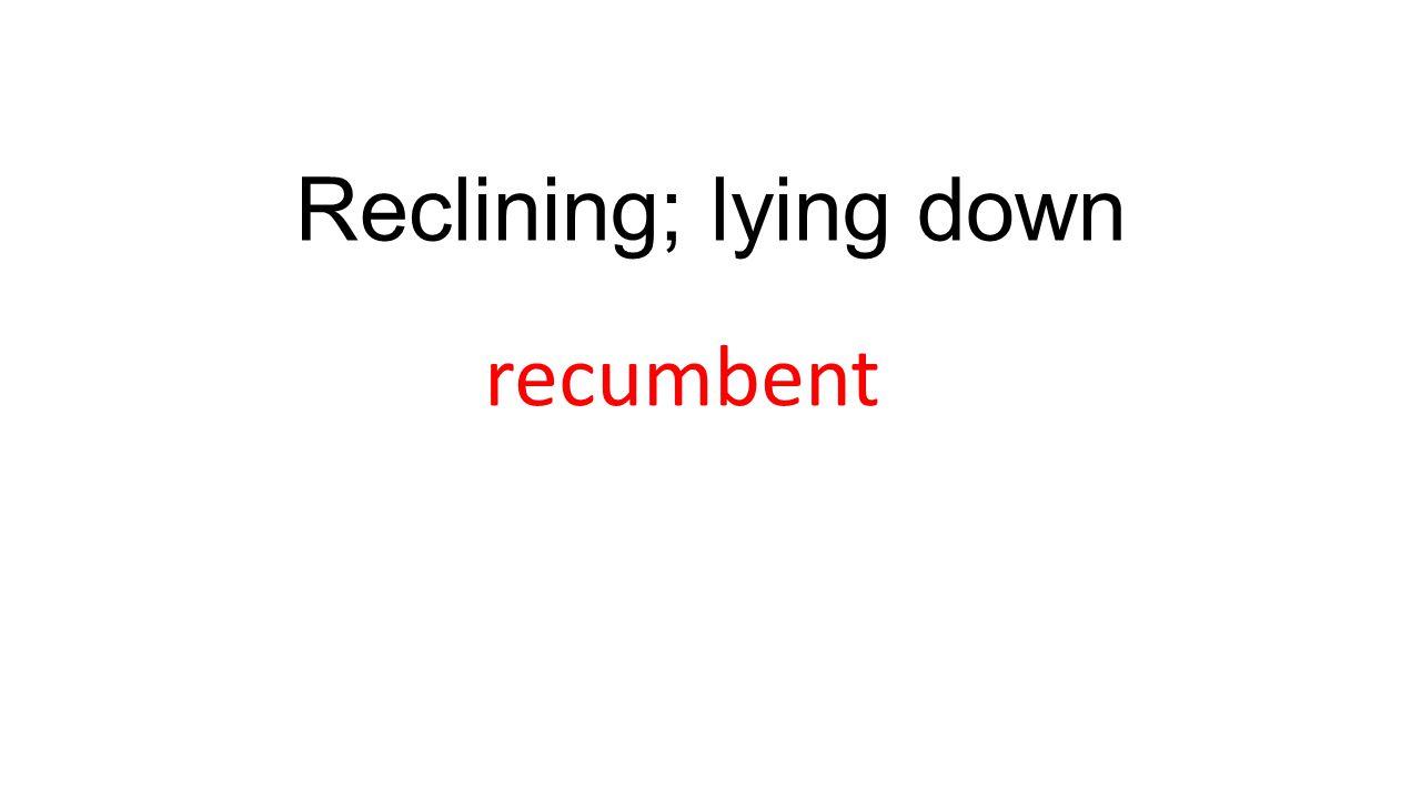 Reclining; lying down recumbent