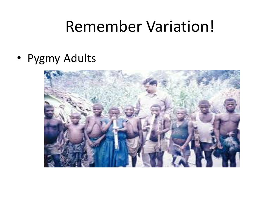 Remember Variation! Pygmy Adults