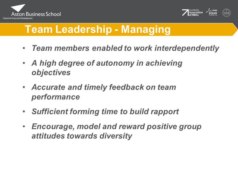 Team Leadership - Managing Team members enabled to work interdependently A high degree of autonomy in achieving objectives Accurate and timely feedback on team performance Sufficient forming time to build rapport Encourage, model and reward positive group attitudes towards diversity