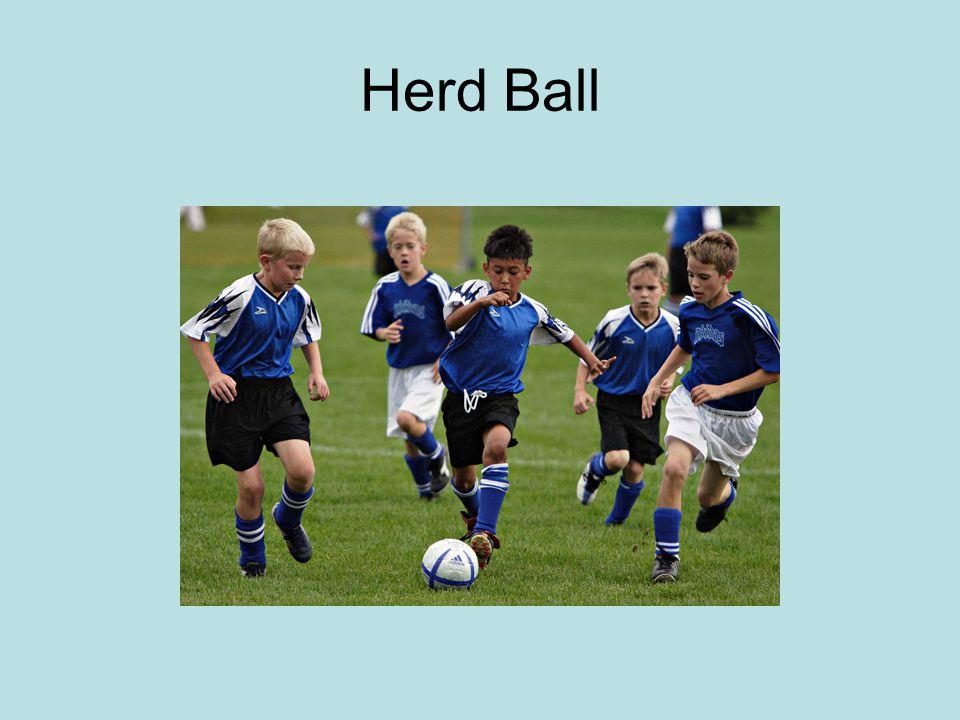 Herd Ball