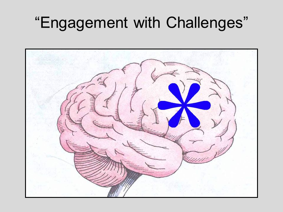 Engagement with Challenges