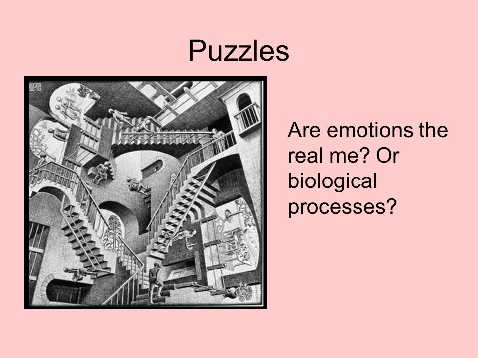Puzzles Are emotions the real me? Or biological processes?