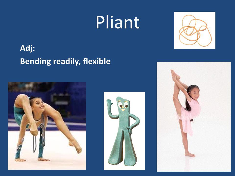 Pliant Adj: Bending readily, flexible