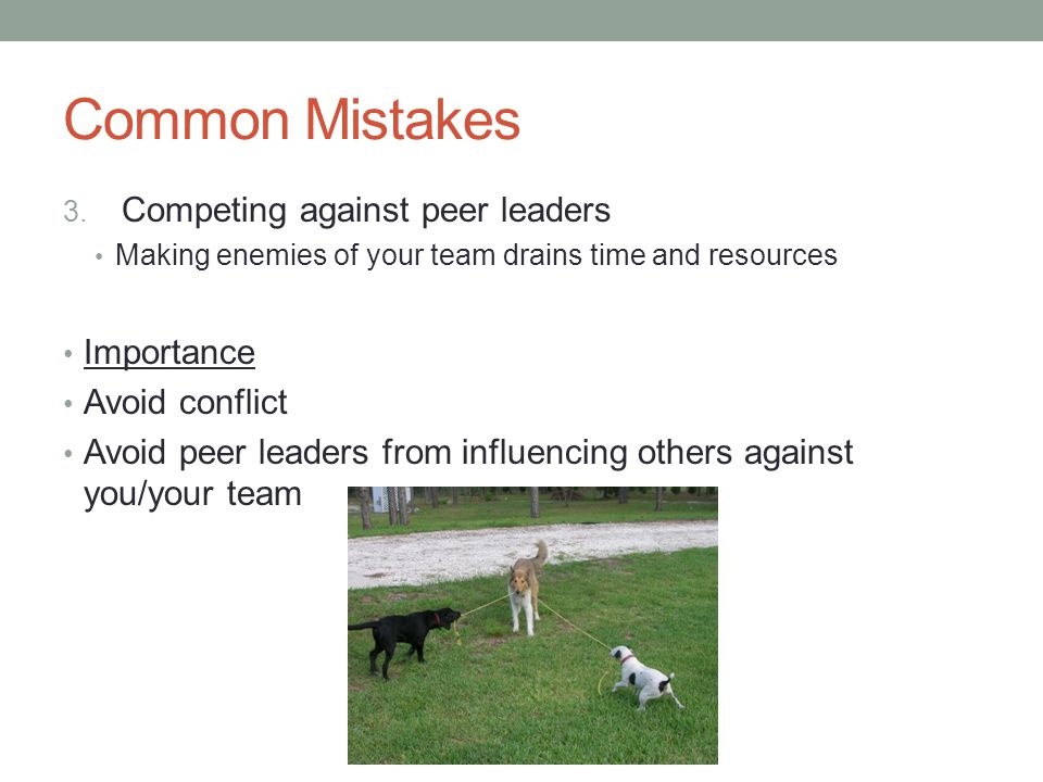 Common Mistakes 3. Competing against peer leaders Making enemies of your team drains time and resources Importance Avoid conflict Avoid peer leaders f