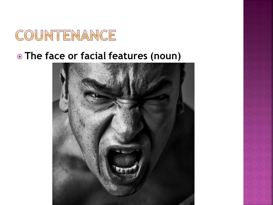  The face or facial features (noun)