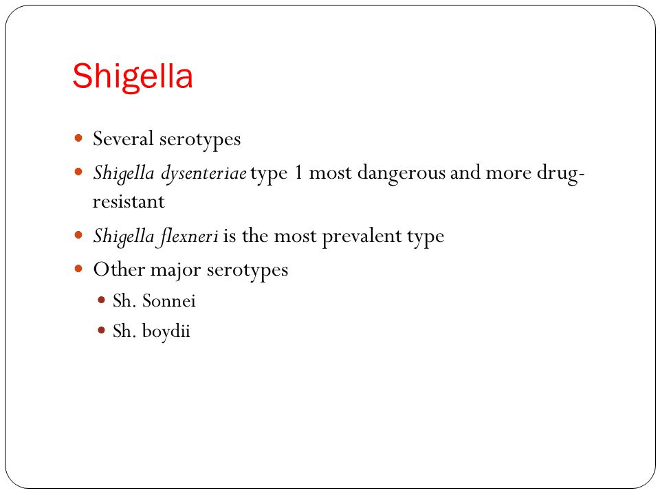 Shigella Several serotypes Shigella dysenteriae type 1 most dangerous and more drug- resistant Shigella flexneri is the most prevalent type Other major serotypes Sh.