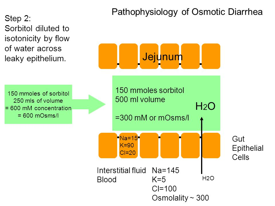 Gut Epithelial Cells Pathophysiology of Osmotic Diarrhea Na=15 K=90 Cl=20 Na=145 K=5 Cl=100 Osmolality ~ 300 Interstitial fluid Blood H2OH2O H2OH2O 150 mmoles of sorbitol 250 mls of volume = 600 mM concentration = 600 mOsms/l Step 2: Sorbitol diluted to isotonicity by flow of water across leaky epithelium.