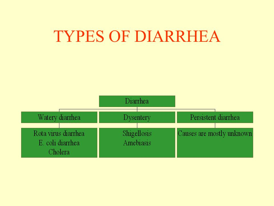 COMMON CAUSES OF DIARRHEA- BACTERIA –Vibrio cholera –Shigella –Escherichia coli –Salmonella –Campylobacter jejuni –Yersinia enterocolitica –Staphylococcus –Vibrio parahemolyticus –Clostridium difficile
