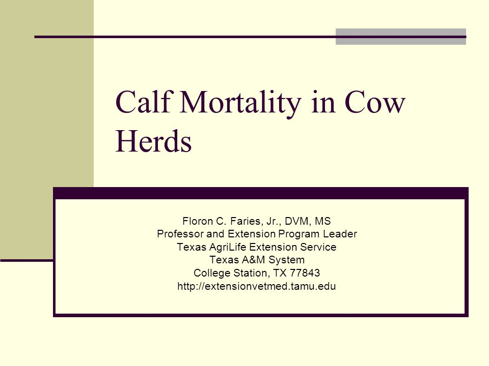 Calf Mortality in Cow Herds Floron C.