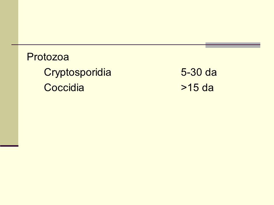 Protozoa Cryptosporidia5-30 da Coccidia>15 da