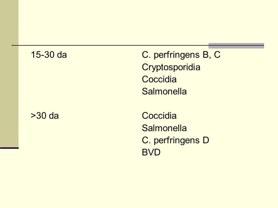 15-30 daC. perfringens B, C Cryptosporidia Coccidia Salmonella >30 daCoccidia Salmonella C.