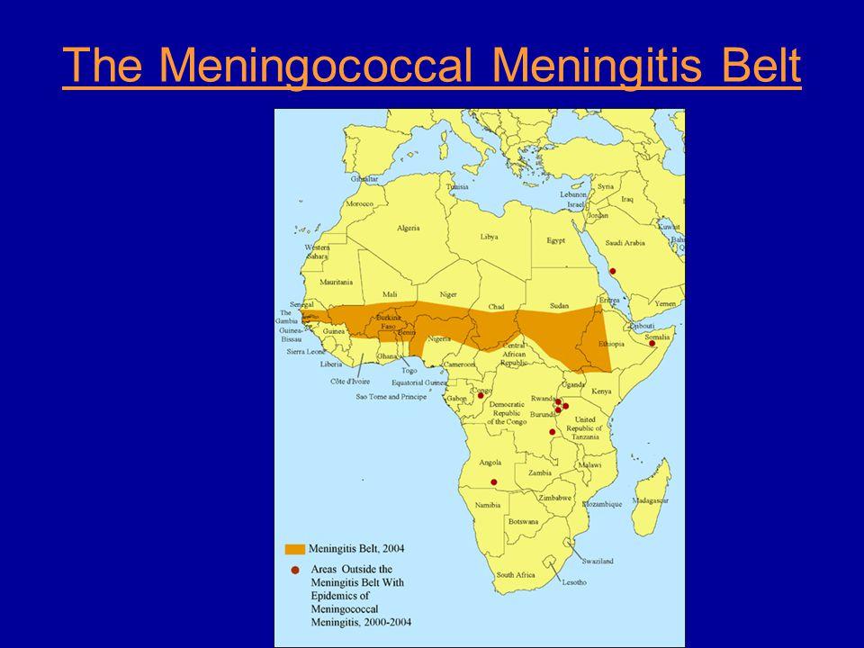 The Meningococcal Meningitis Belt