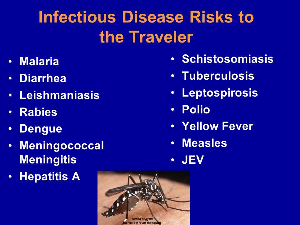 Infectious Disease Risks to the Traveler Malaria Diarrhea Leishmaniasis Rabies Dengue Meningococcal Meningitis Hepatitis A Schistosomiasis Tuberculosi