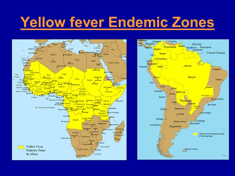 Yellow fever Endemic Zones