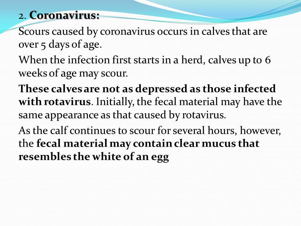 Coronavirus: 2.