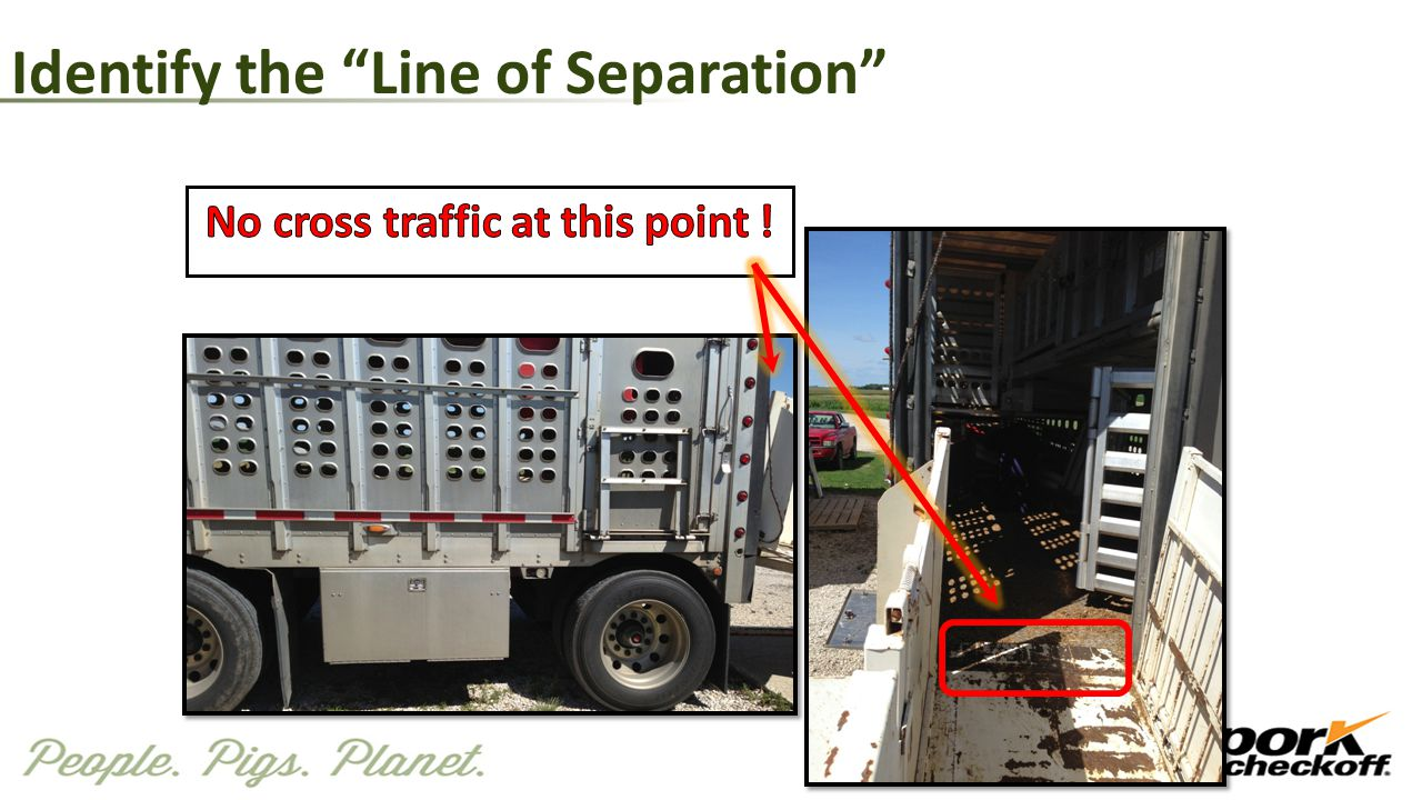 "Identify the ""Line of Separation"""