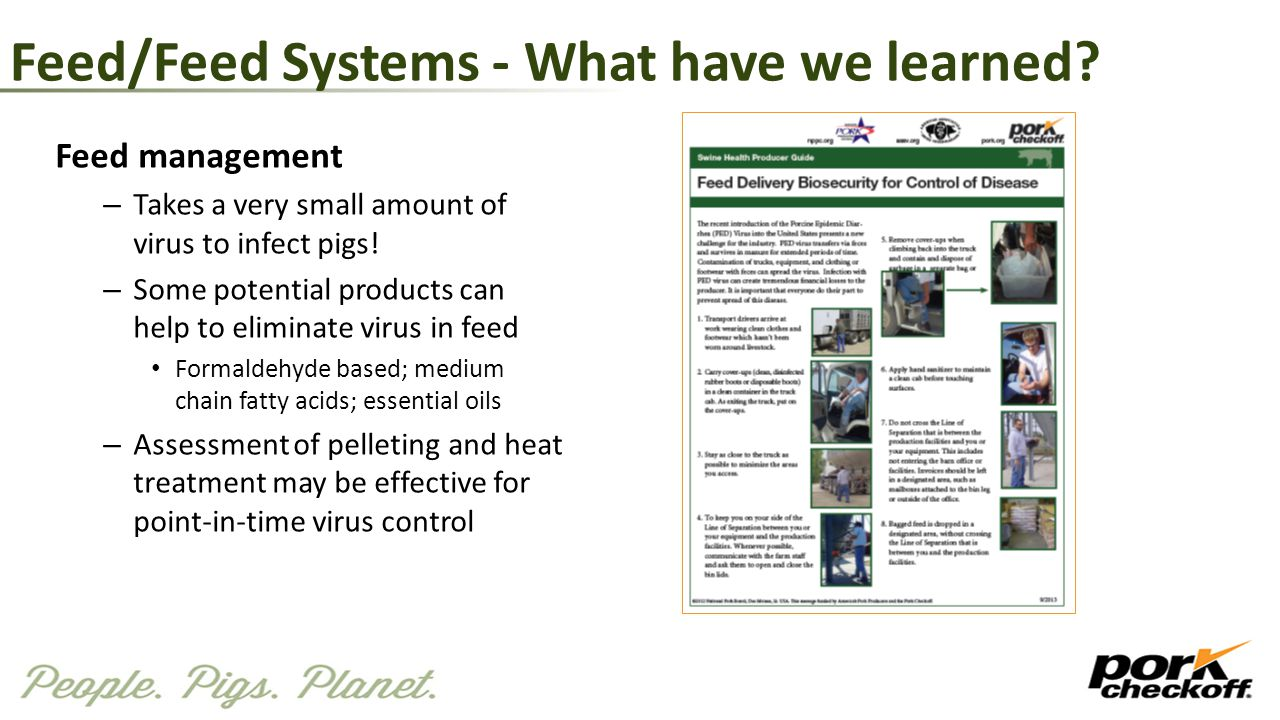 Feed/Feed Systems - What have we learned? Feed management – Takes a very small amount of virus to infect pigs! – Some potential products can help to e