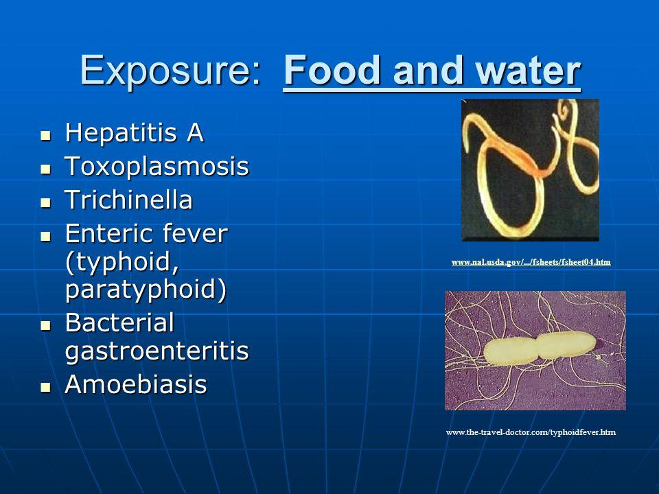 Exposure: Food and water Hepatitis A Hepatitis A Toxoplasmosis Toxoplasmosis Trichinella Trichinella Enteric fever (typhoid, paratyphoid) Enteric fever (typhoid, paratyphoid) Bacterial gastroenteritis Bacterial gastroenteritis Amoebiasis Amoebiasis www.the-travel-doctor.com/typhoidfever.htm www.nal.usda.gov/.../fsheets/fsheet04.htm