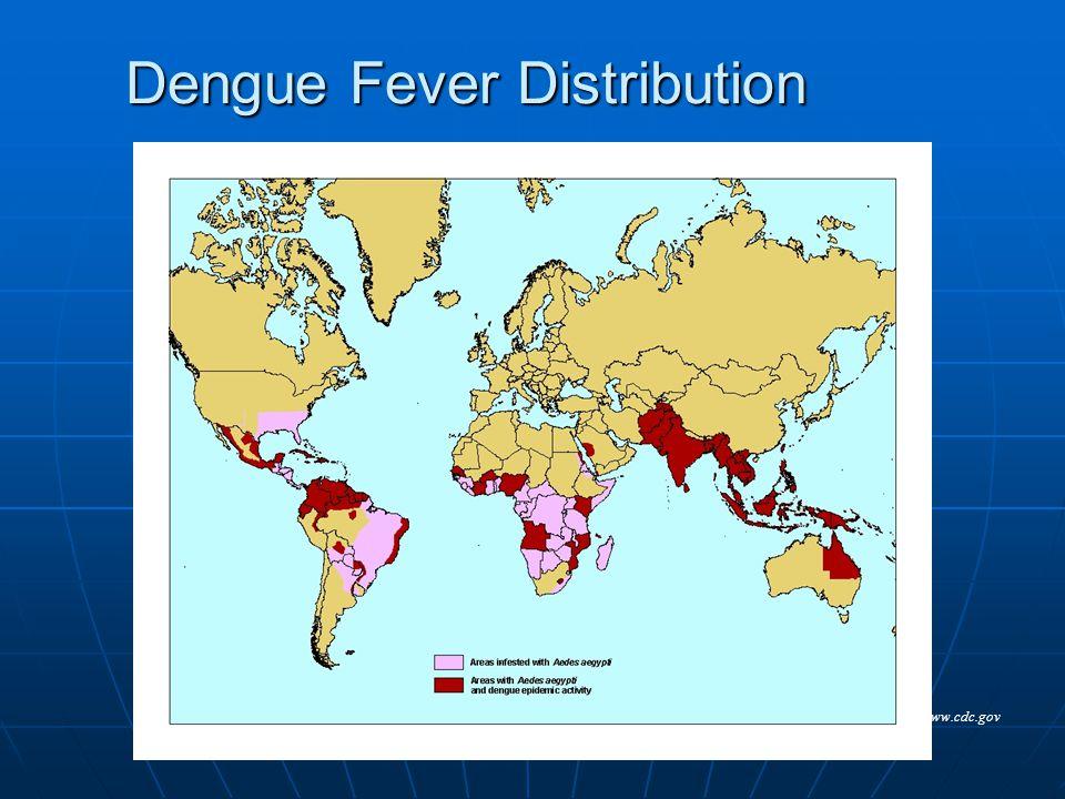 Dengue Fever Distribution www.cdc.gov