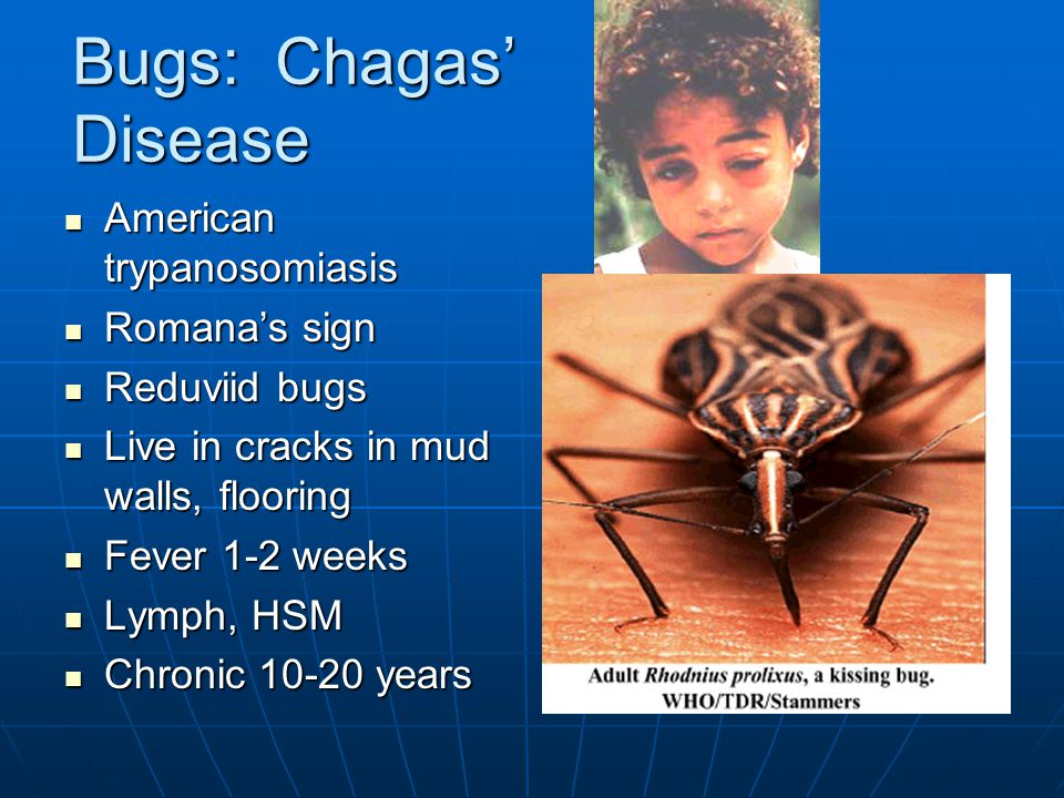 Bugs: Chagas' Disease American trypanosomiasis American trypanosomiasis Romana's sign Romana's sign Reduviid bugs Reduviid bugs Live in cracks in mud