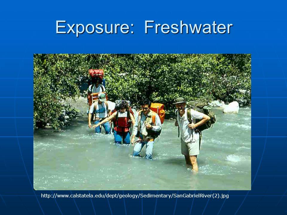 Exposure: Freshwater http://www.calstatela.edu/dept/geology/Sedimentary/SanGabrielRiver(2).jpg