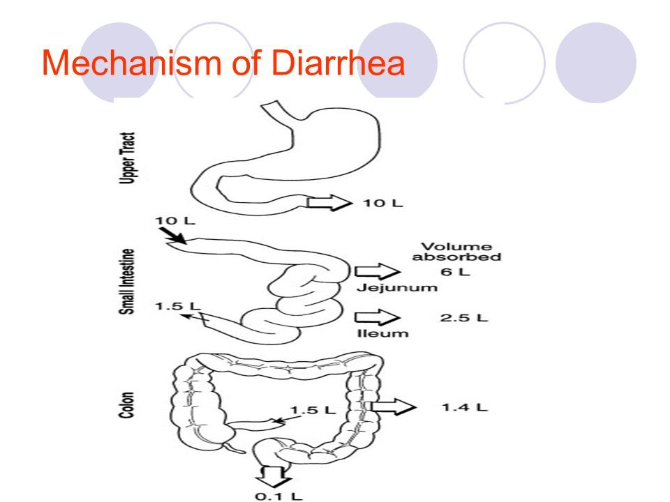 Mechanism of Diarrhea