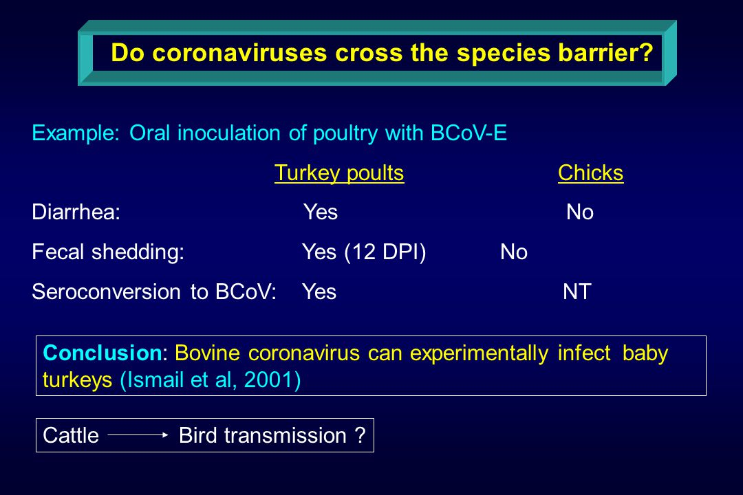 Do coronaviruses cross the species barrier.