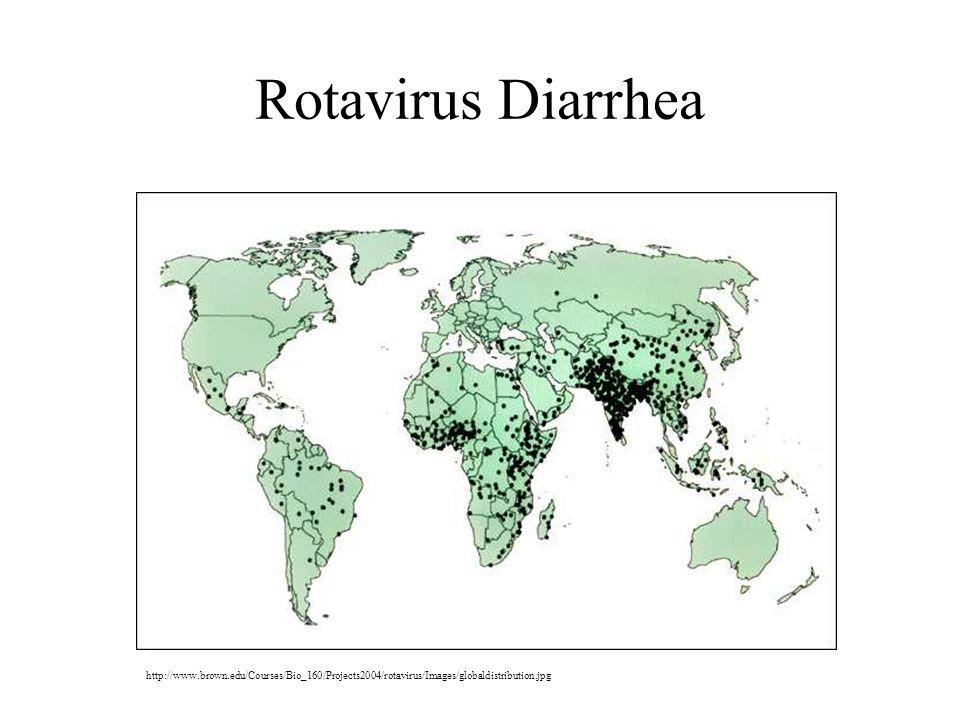 Rotavirus Diarrhea http://www.brown.edu/Courses/Bio_160/Projects2004/rotavirus/Images/globaldistribution.jpg