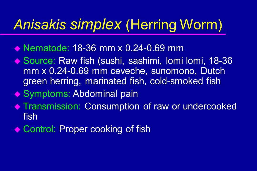 Anisakis simplex (Herring Worm) u Nematode: 18-36 mm x 0.24-0.69 mm u Source: Raw fish (sushi, sashimi, lomi lomi, 18-36 mm x 0.24-0.69 mm ceveche, sunomono, Dutch green herring, marinated fish, cold-smoked fish u Symptoms: Abdominal pain u Transmission: Consumption of raw or undercooked fish u Control: Proper cooking of fish